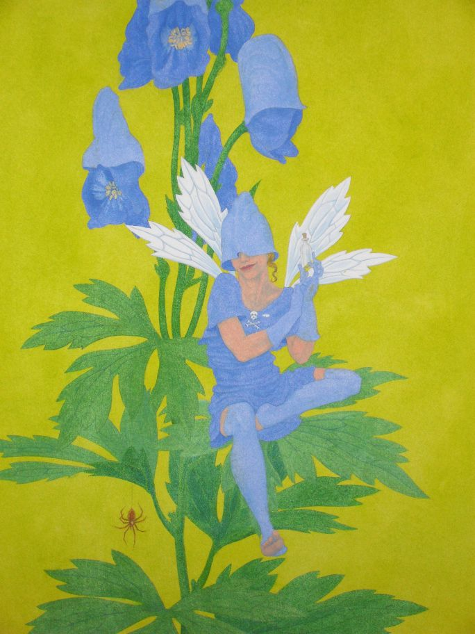 Monkshood Fairy - step-by-step 3