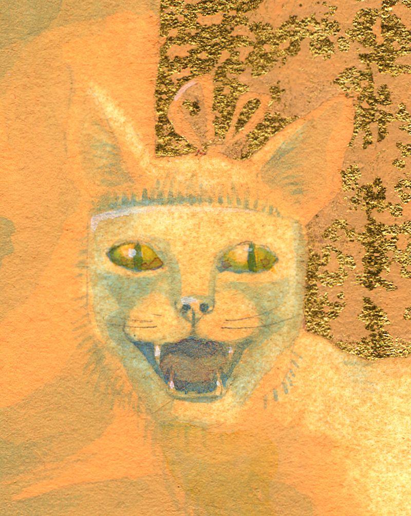 Masked cat