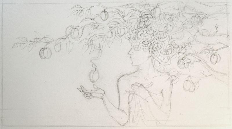 Medusa and the plum tree (sketch)