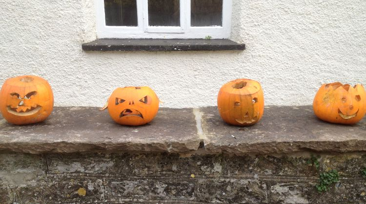 pumpkins on the wall, getting a little moldy now...