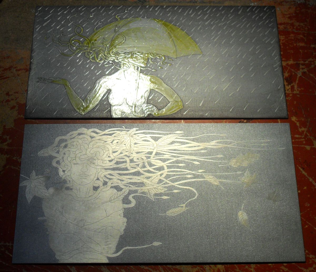 Two Medusa Plates - in reflecting light