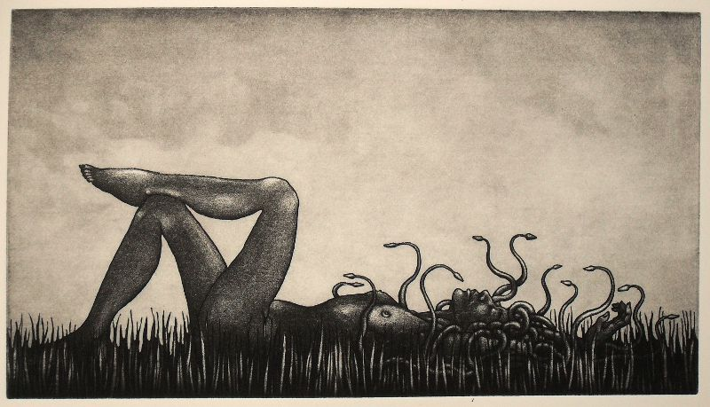 Medusa etching for July: 'Snakes in the Long Grass'
