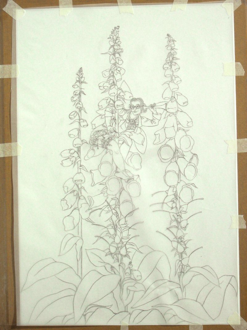 Work in progress on the Foxglove Fairy: outline tracing