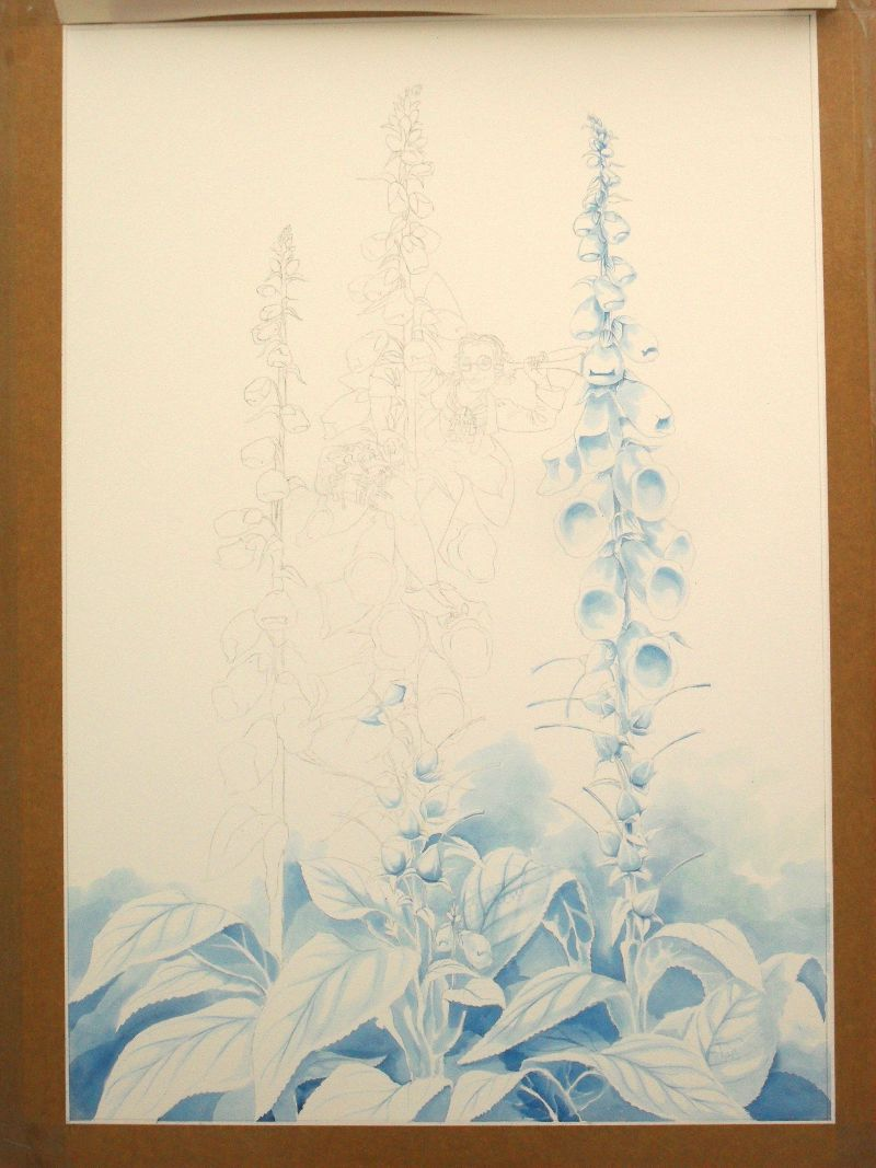 Work in progress on the Foxglove Fairy: the blue underpainting 1