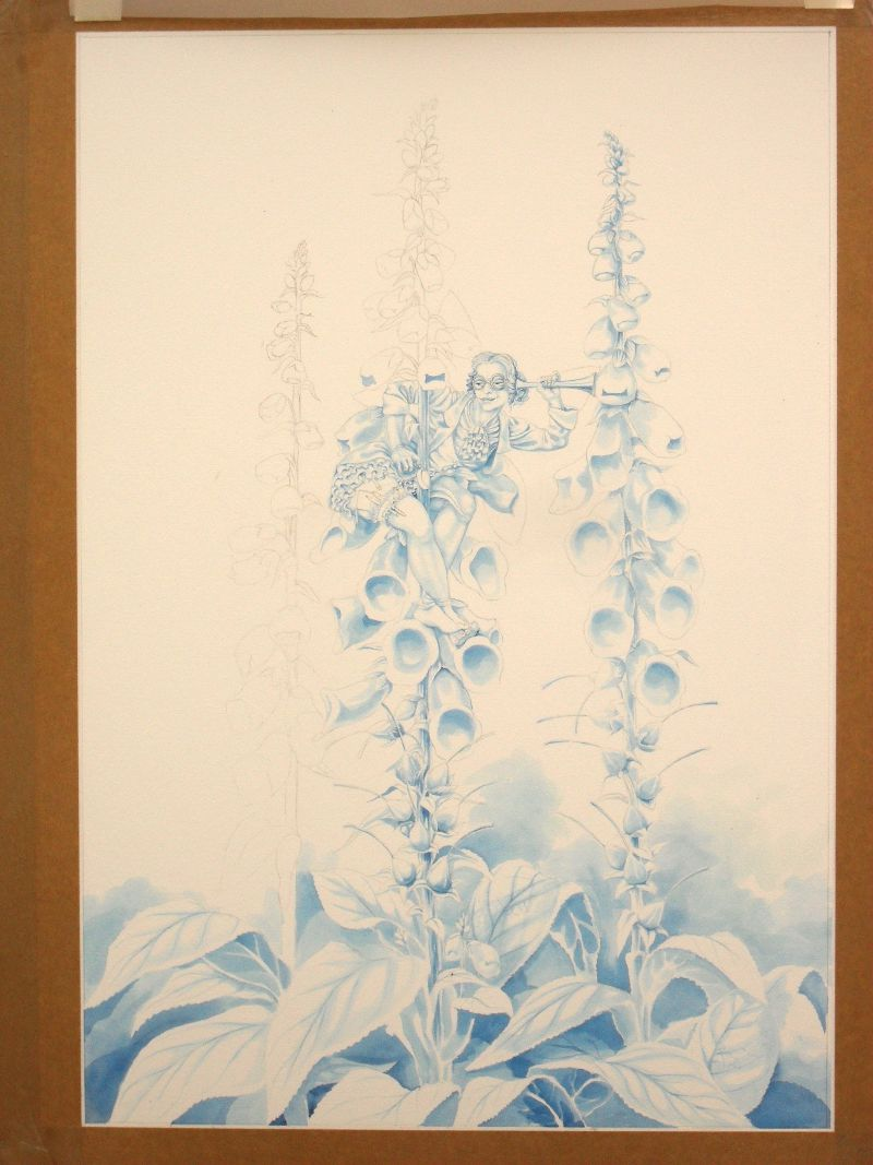 Work in progress on the Foxglove Fairy: the blue underpainting 2