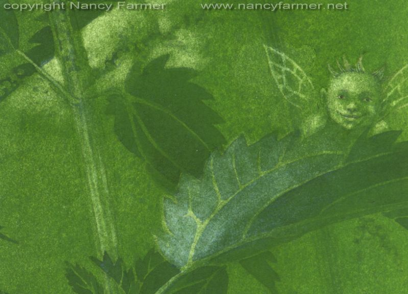 Urtica Dioica, Stinging Nettle Fairies - close-up 4