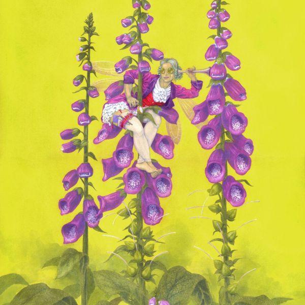 Digitalis Purpurea, the Folglove Fairy - painting in gouache