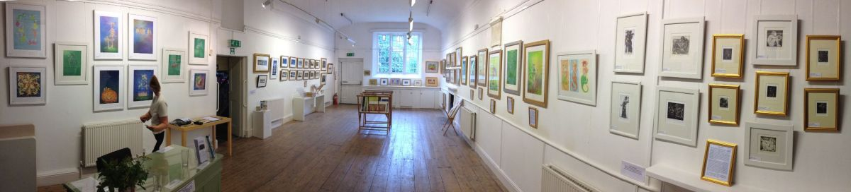 Nancy Farmer at Ilminster Arts Centre - panorama