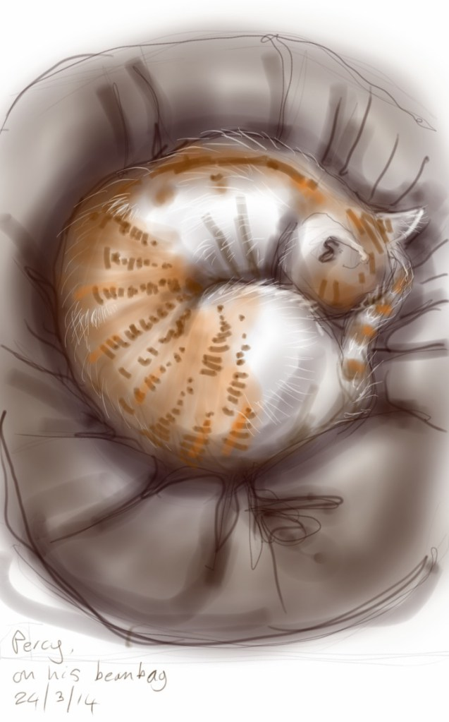 Cat in a ball