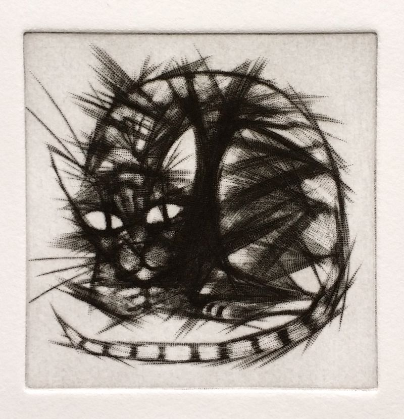 Spiky Cat mezzotint print