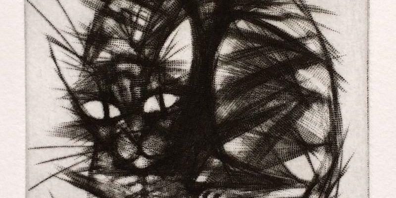 Spiky Cat mezzotint print