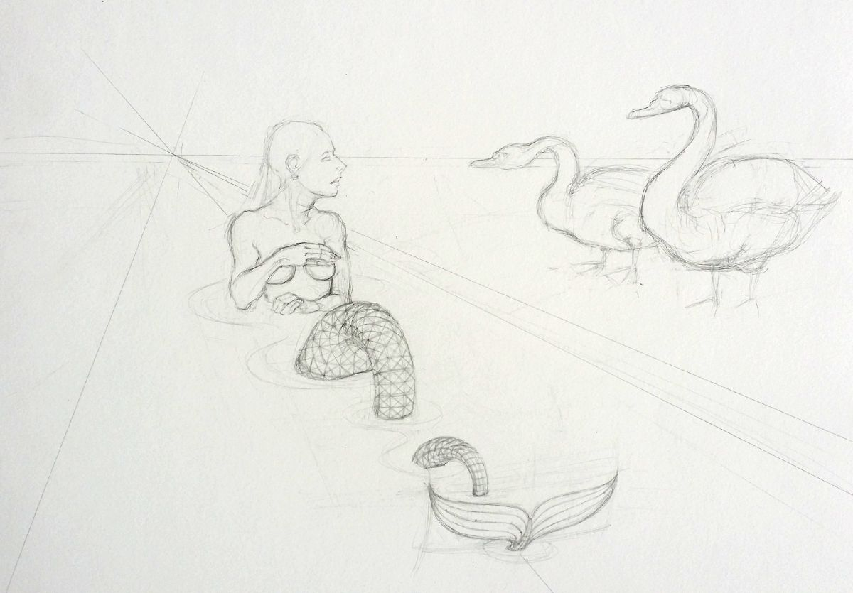 Sketch of Rhyne Maiden, Swans and unforgiving perspective