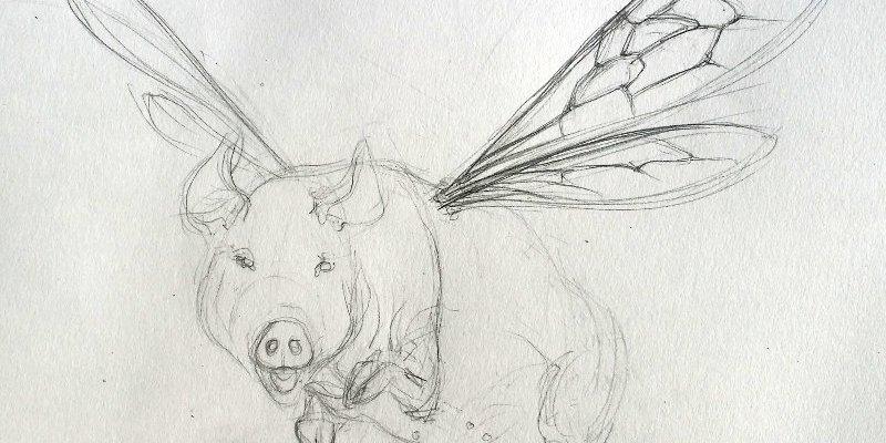 Flying Pig 2