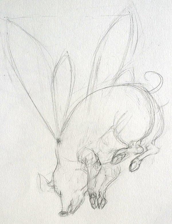 Flying Pig 3