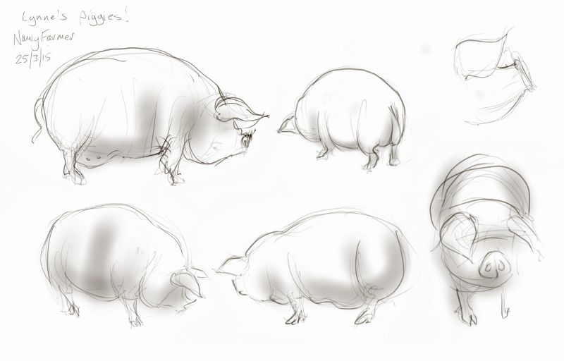 Old Fat Pigs