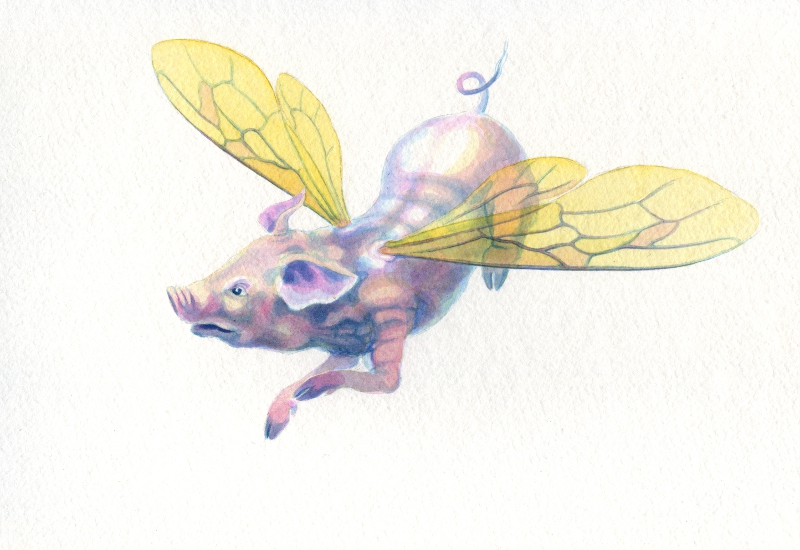 Archibald Pig