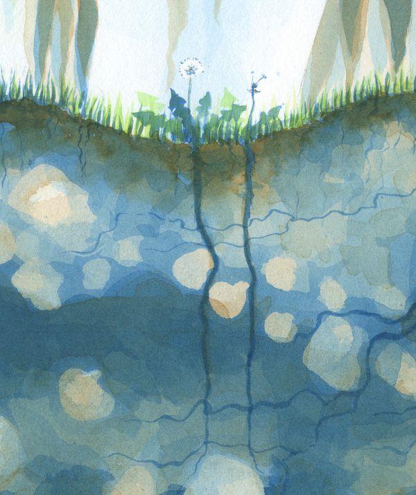 Detail of Dandelions
