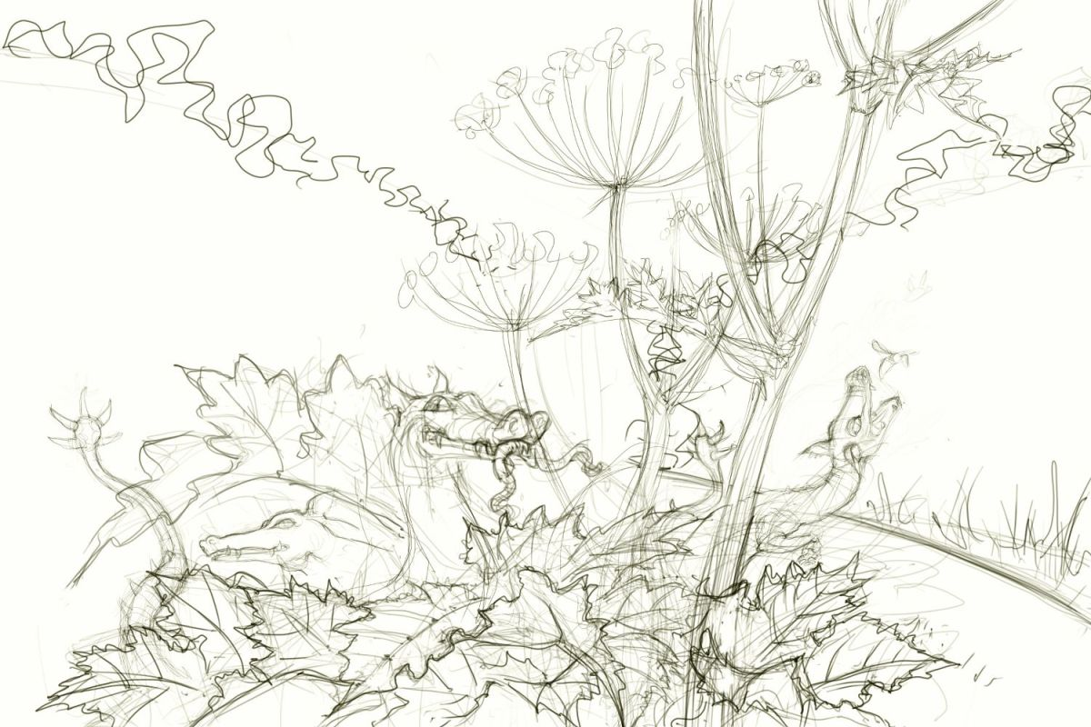 Ditch Dragons - sketch