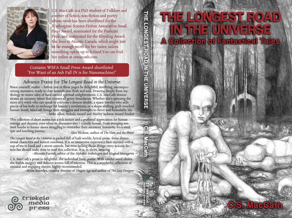 Ebook cover for 'The Longest Road in the Universe' by C.S. MacCath