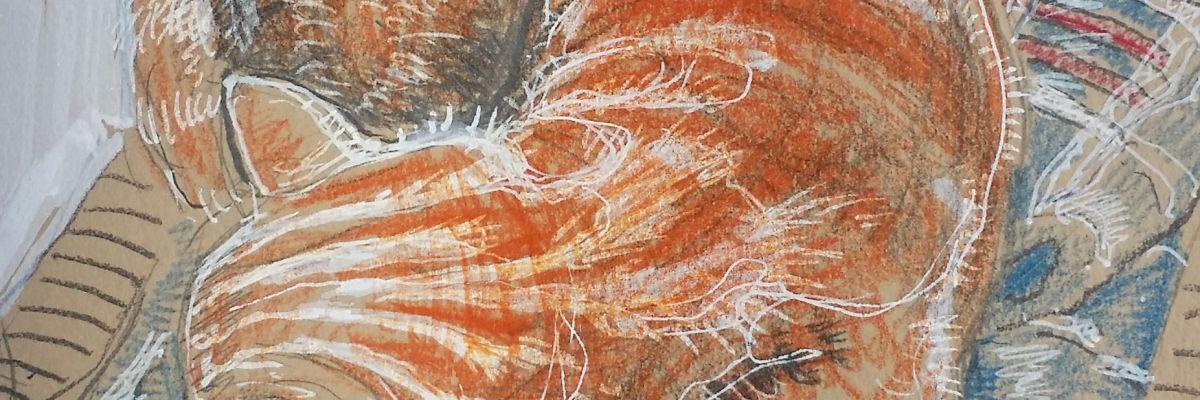 Atthur's Stripes, close-up