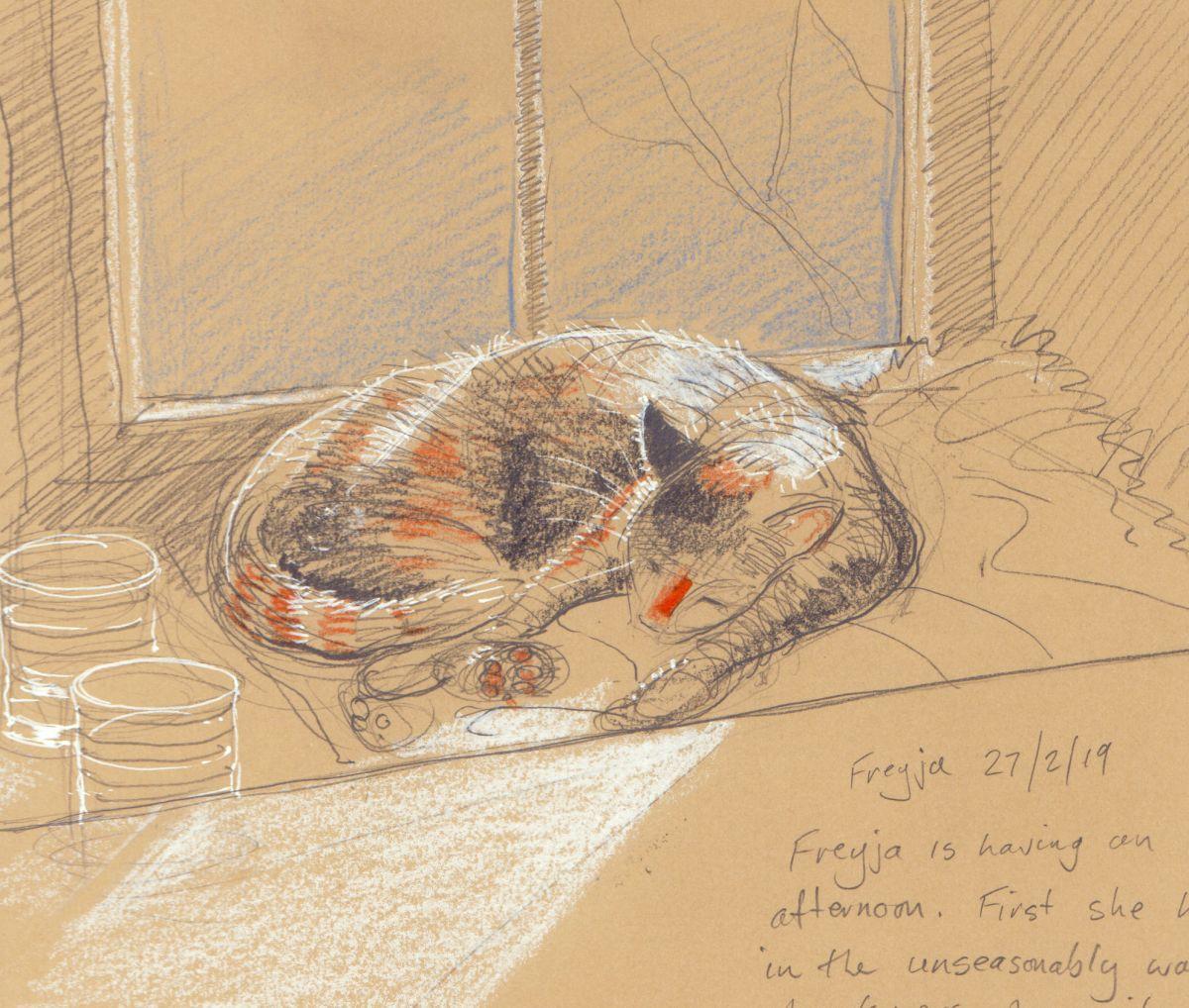 Freyja cat sketch