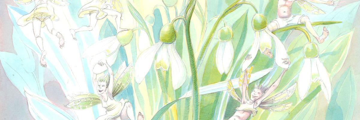 Snowdrop Fairies, 10 inches square, painting in watercolour by Nancy Farmer